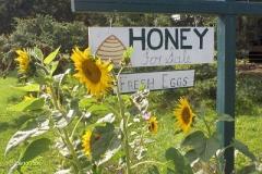 honey for sale 005